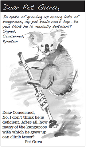Dear Pet Guru: FebMar '16
