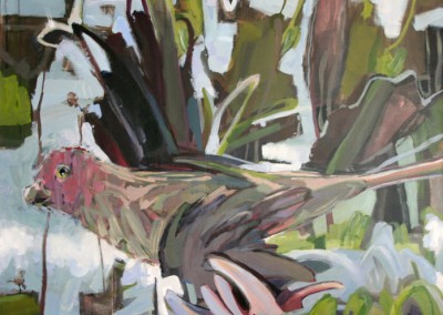 """""""Parrot"""" by Brendan Hehir 2012"""