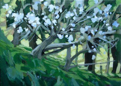 """Blossom"" acrylic on canvas by Brendan Hehir"